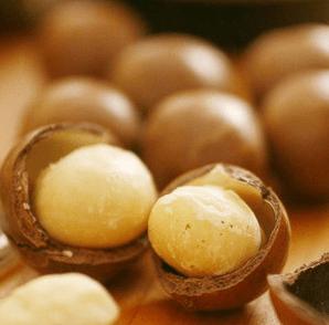 マカダミアンナッツ macadamia nuts