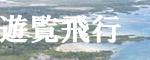 セブ島セスナ体験操縦、セスナ遊覧飛行